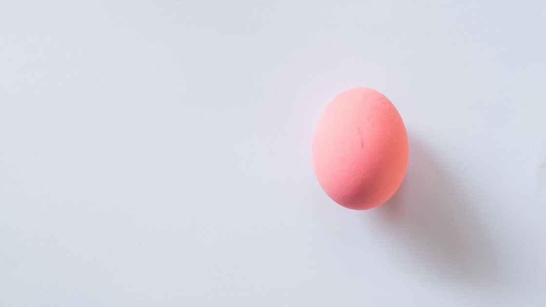 schwangerschaft_eier